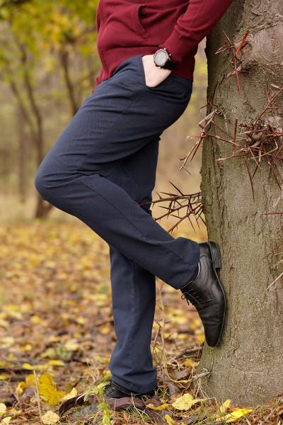Мъжки панталон Regular в син цвят